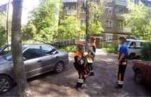 В Ярославле из-за сильного ветра огромная береза упала на припаркованные у дома машины