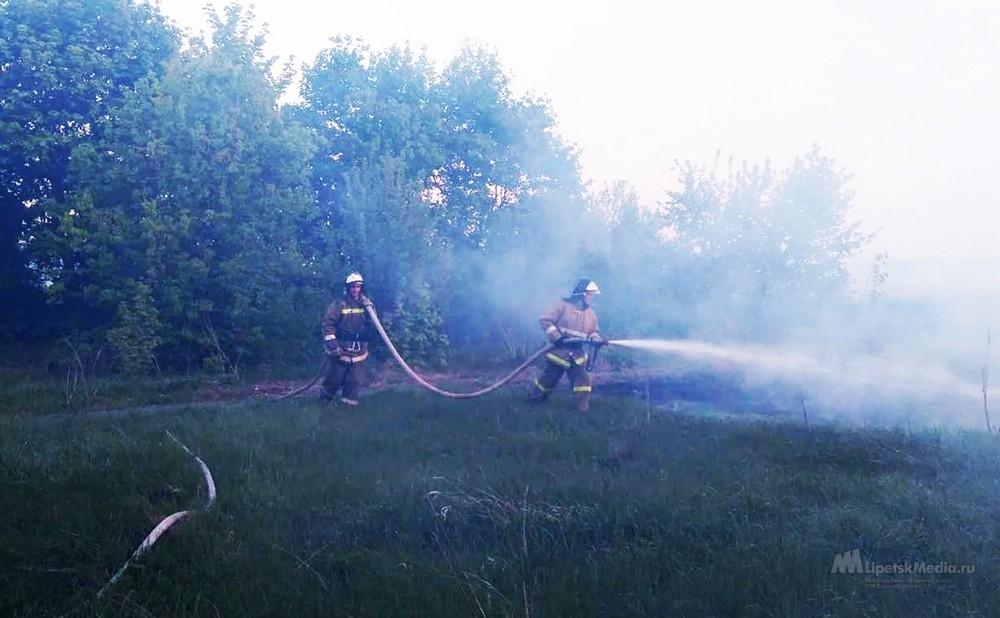 В четырех районах Липецкой области - самая большая опасность пожаров
