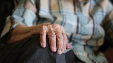 Мясо в доме престарелых приправили очистителем для рук