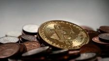 Ученые выяснили, как соцсети влияют на цену биткоина