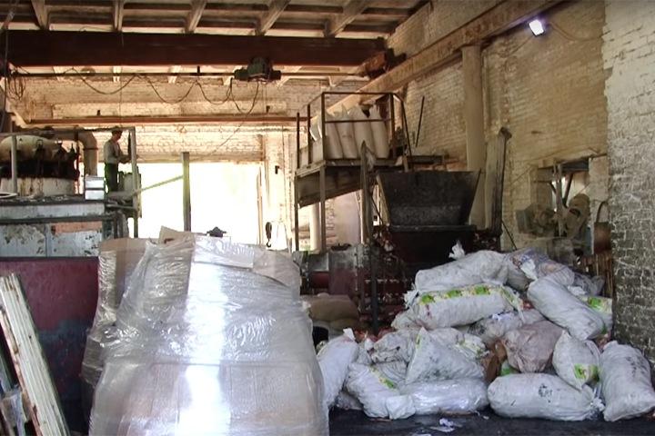 Жители алтайского села попросят Томенко закрыть вонючий завод по переработке костей