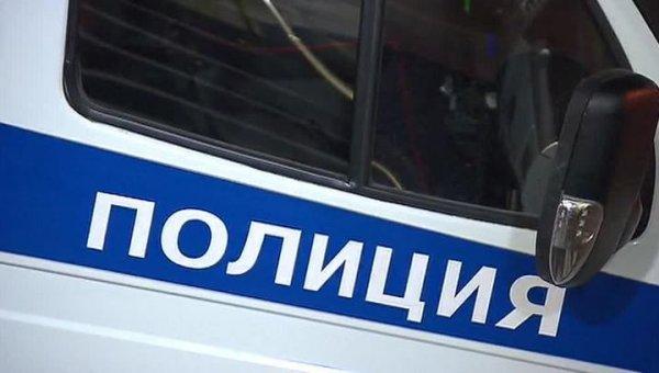 Овчарка Тамико разыскала несовершеннолетних злоумышленников в Иркутске