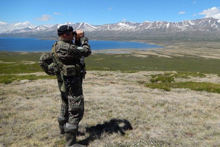 Добровольцы будут ловить браконьеров на Алтае
