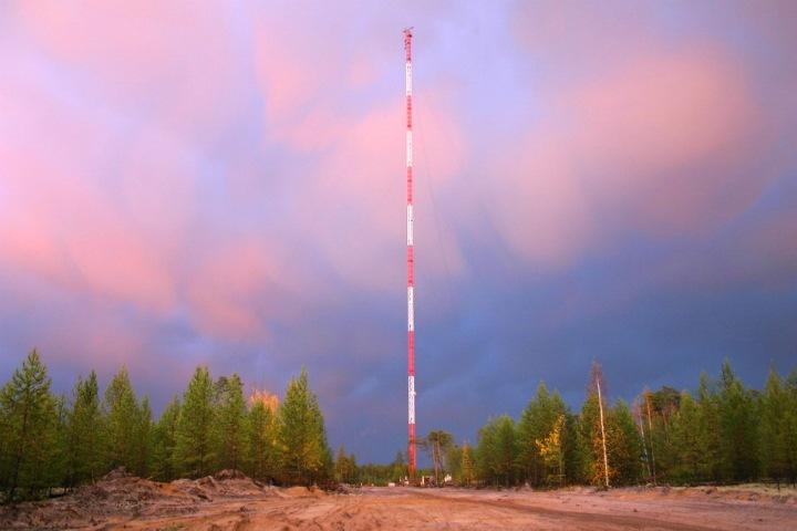 Пожары в сибирской тайге повышают концентрацию угарного газа в воздухе в 30 раз