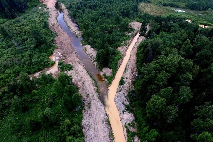 Кемеровская прокуратура возбудила дело о загрязнении реки Кии