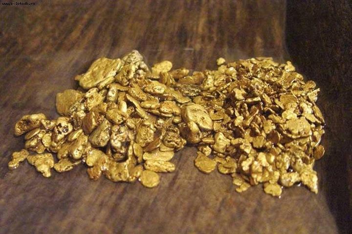 Госдума одобрила соглашение с Китаем о добыче золота в Забайкалье