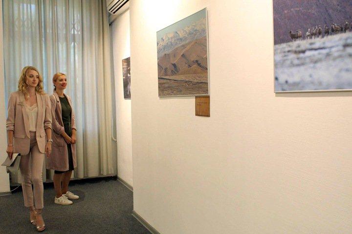 Краснокнижных животных Алтая показали в новосибирском музее