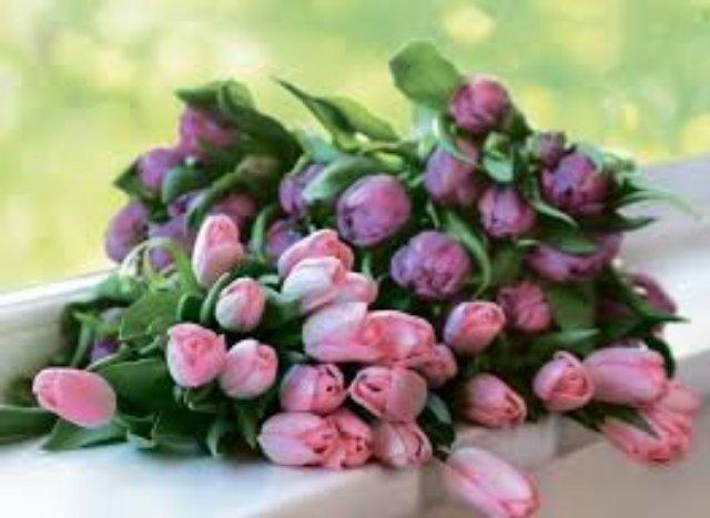 Большая охапка тюльпанов производит неизгладимое впечатление