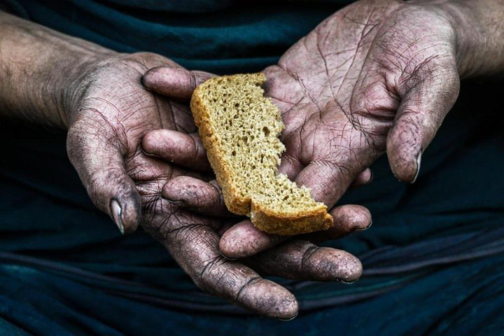 Бердский фотограф уличила киприота в краже своей фотографии, с которой тот победил на международном конкурсе