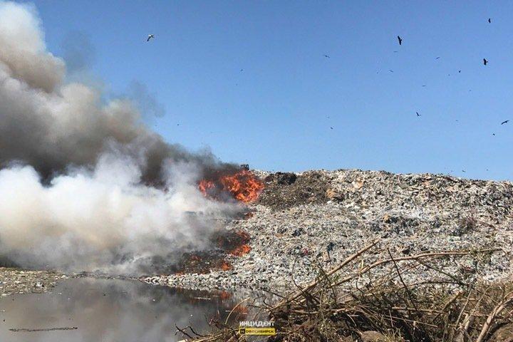 Роспотребнадзор проверит горящую в Новосибирске свалку