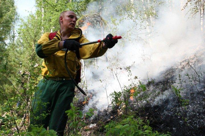 Площадь лесных пожаров в Приангарье превысила 150 тыс. га