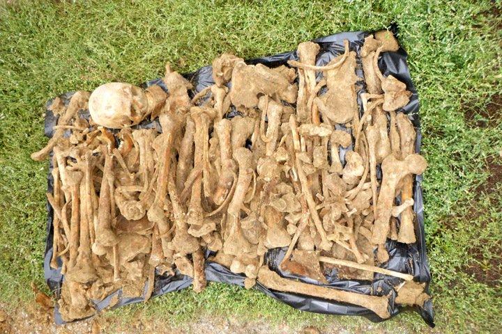 Массовое захоронение обнаружено в алтайском селе