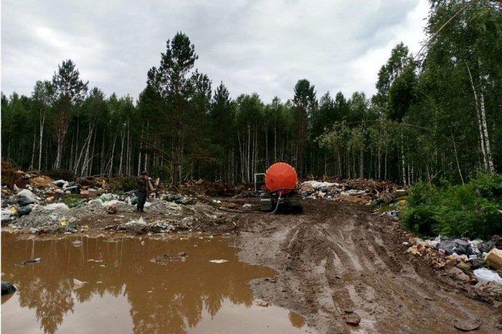 Власти заявили о закрытии незаконной свалки на берегу Телецкого озера