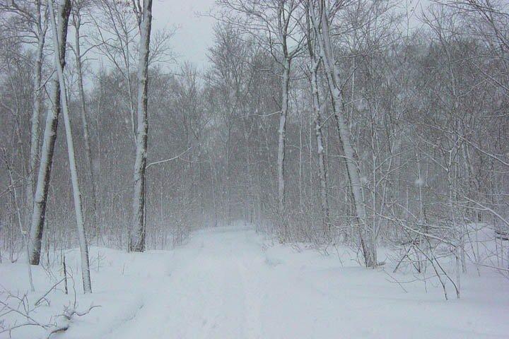 Экстренное предупреждение передано в Западной Сибири: метели и похолодание