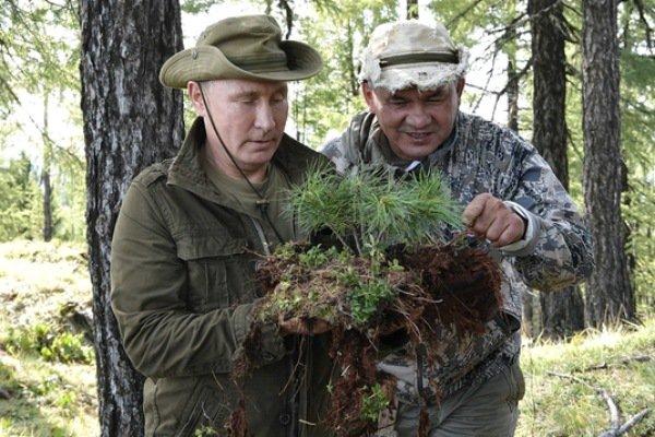 Ученые в Хакасии защищают растения и готовят напитки из картошки