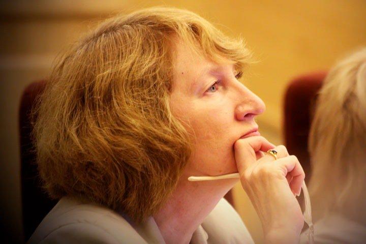Новосибирские депутаты посоветовали правительству заглянуть за пределы агломерации