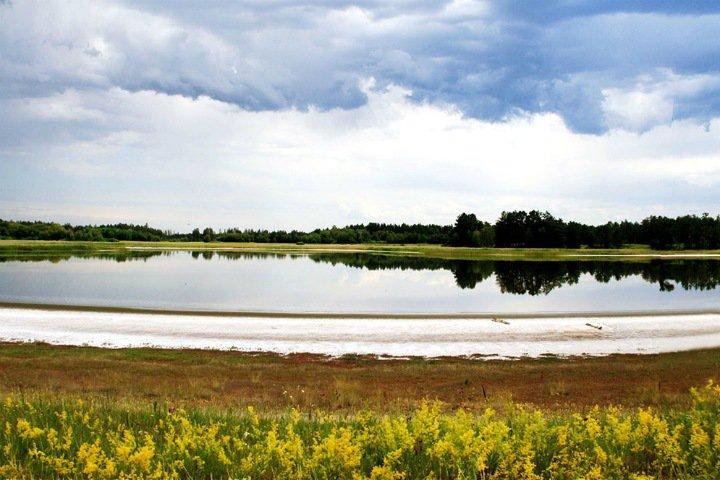 Ученые нашли неизвестные бактерии в гиперсоленом озере на Алтае. Они способны запасать солнечную энергию