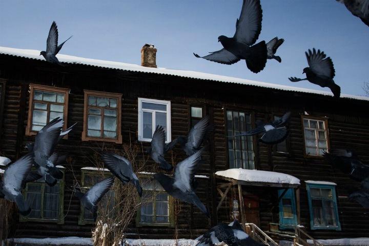 Начинается Затон и кончается закон: как живет новосибирский микрорайон в ожидании сноса