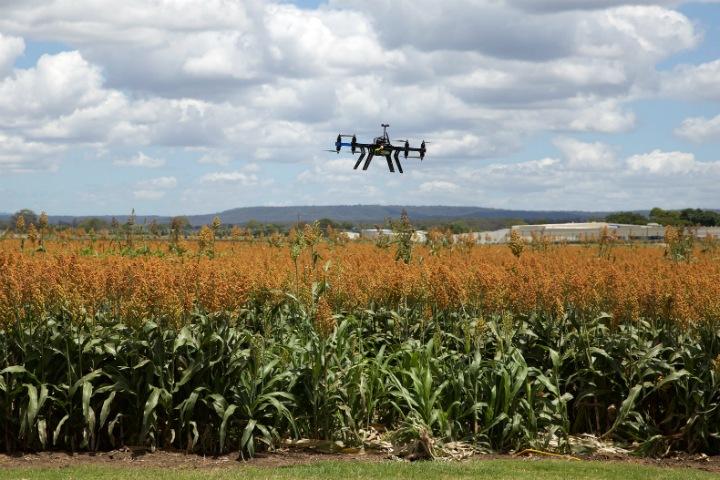 Наука года: как технологии меняют сельское хозяйство
