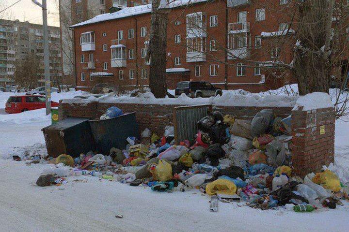 Комитет по экологии появится в мэрии Новосибирска