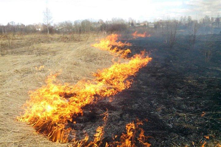 Режим повышенной готовности ввели из-за всплеска степных пожаров в Хакасии