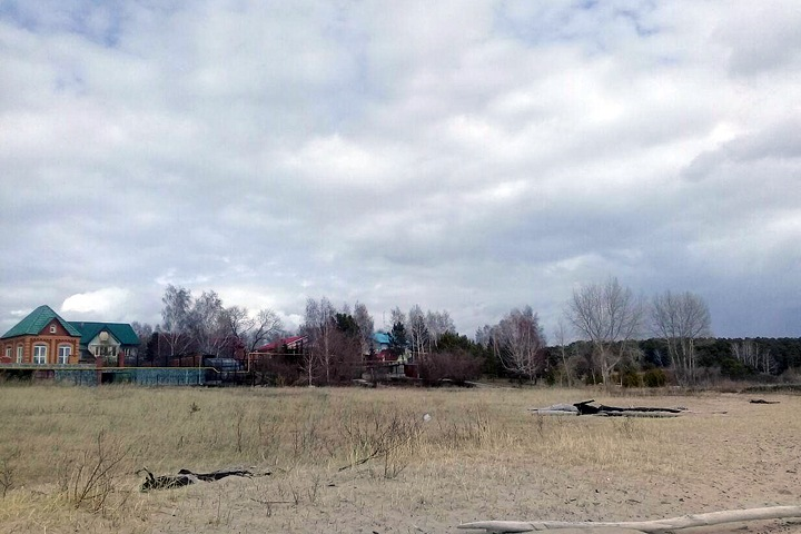 «Золотой берег»: Власти отдали новосибирский лес под застройку ветеранам, но земля оказалась у родственников чиновников