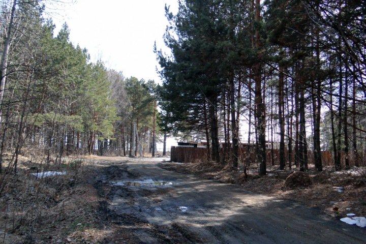 Выделявшуюся ветеранам землю у Новосибирского водохранилища выставили на продажу