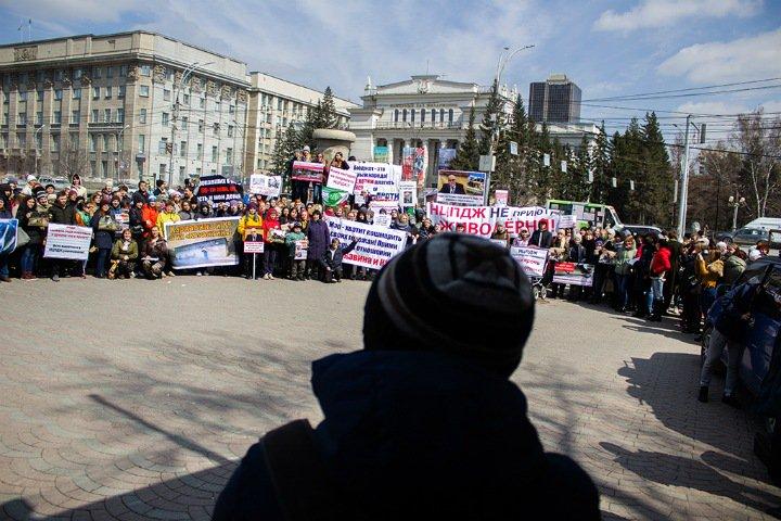 «Всех, кто пришел сегодня, я называю друзьями»: новосибирцы протестуют против жестокого обращения с животными