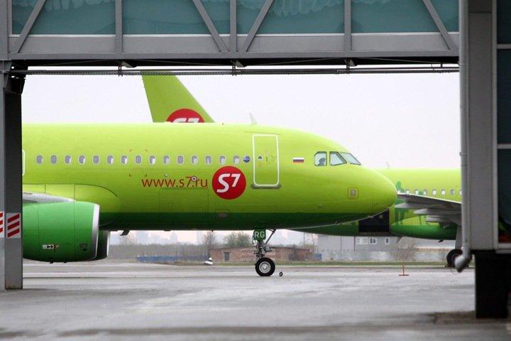 Совладелец S7 погибла в авиакастрофе в Германии