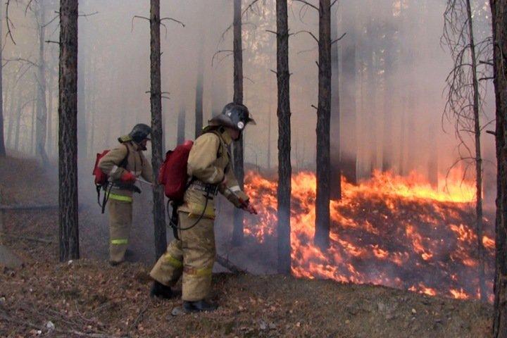 Людей эвакуируют из двух сел Иркутской области из-за пожаров