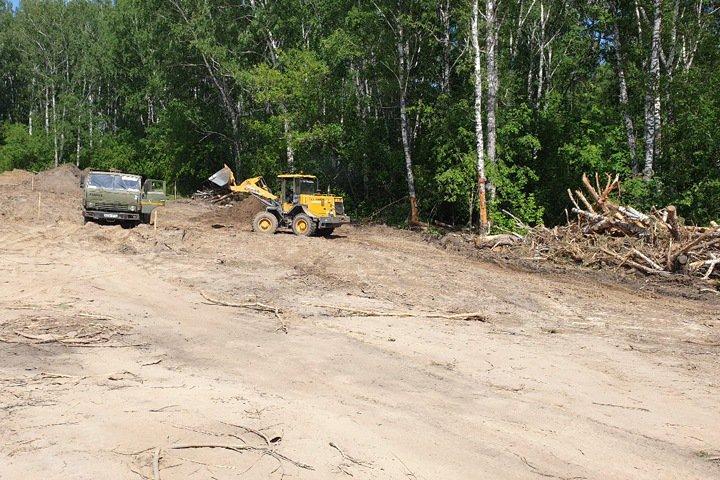 Участок леса вырубили в Новосибирске под автодром
