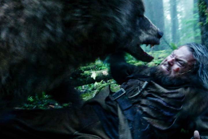 Тувинец спасся, откусив язык напавшего на него медведя