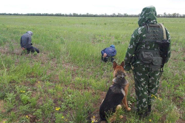 Жители Киргизии попытались незаконно пересечь границу России спиной вперед