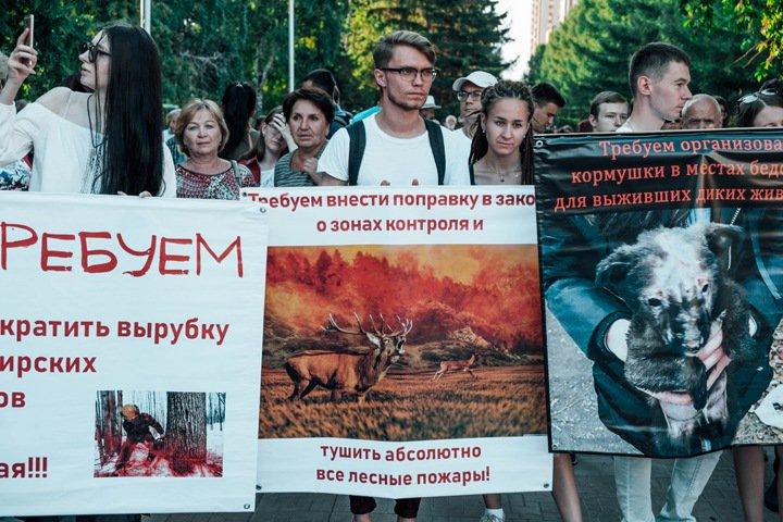 Сотни новосибирцев на митинге потребовали потушить лесные пожары и вспомнили стерхов