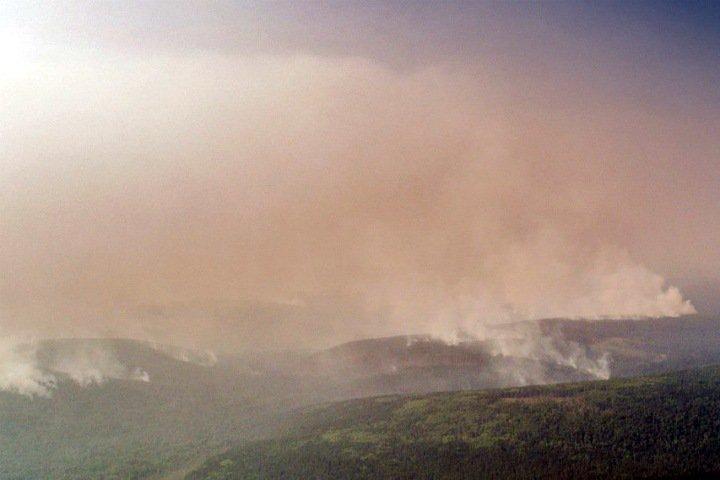 Площадь пожаров в Сибири превысила 2 млн га. Жители задыхаются от дыма