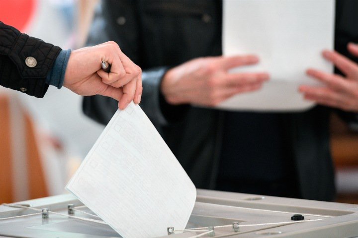 Собрано около трети средств на независимый соцопрос о выборах мэра Новосибирска