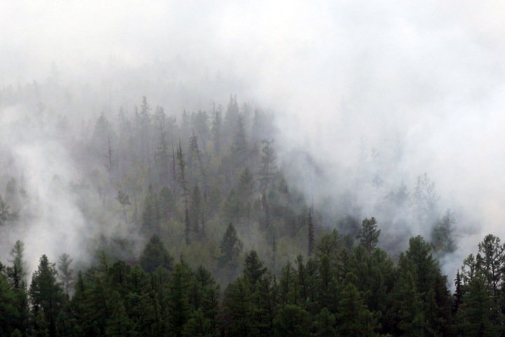 Экс-начальник расформированного Сибирского центра МЧС: «Пожары надо тушить в зародыше»