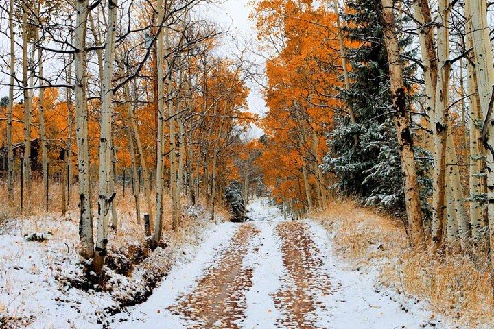 Снег и похолодание ожидаются в Новосибирской области на выходных