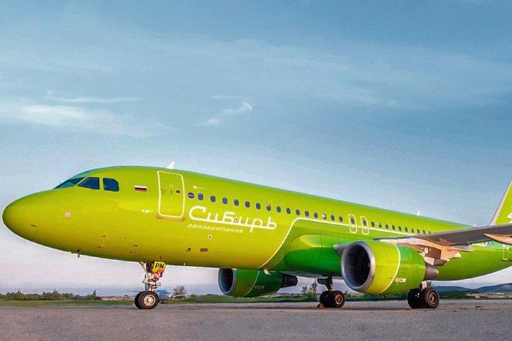 Авиакомпания S7 собрала деньги на 1 млн деревьев за месяц