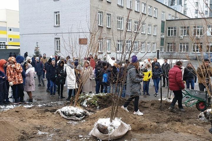 Мэрия Новосибирска выиграла суд за землю у лицея «Надежда Сибири»