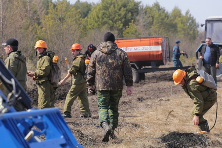 Площадь природных пожаров в Новосибирской области превысила 10 тыс. га