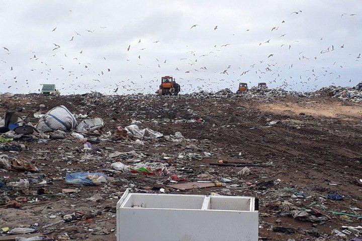 Травников решил «разморозить» мусорную концессию, отказавшись от строительства полигона в Раздольном