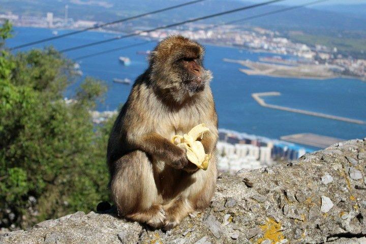Числа недели: гречка, бананы и связь подорожали