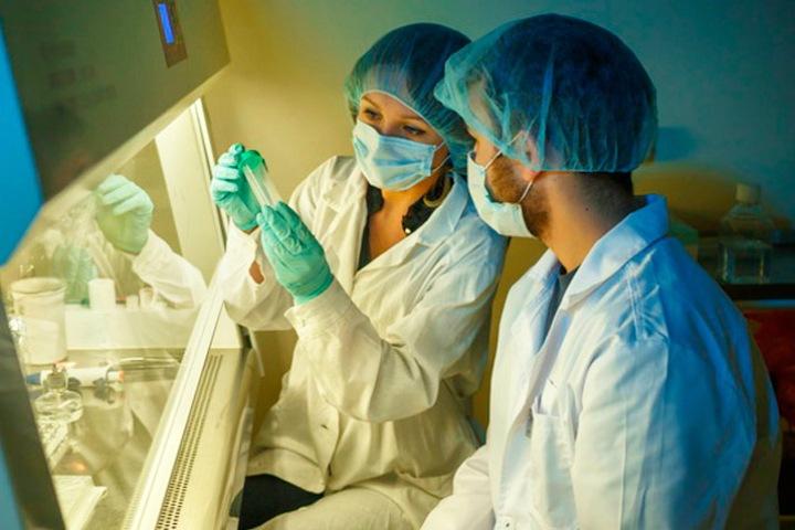 Новые соединения из морской губки в будущем помогут лечить рак