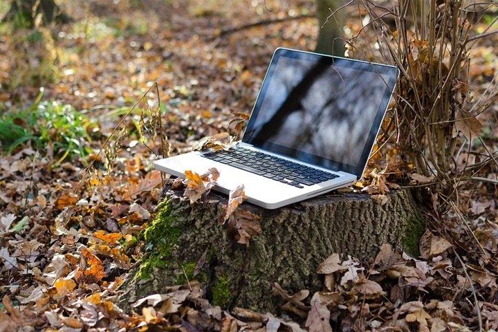 Бесплатный уличный Wi-Fi появится в сотнях алтайских сел