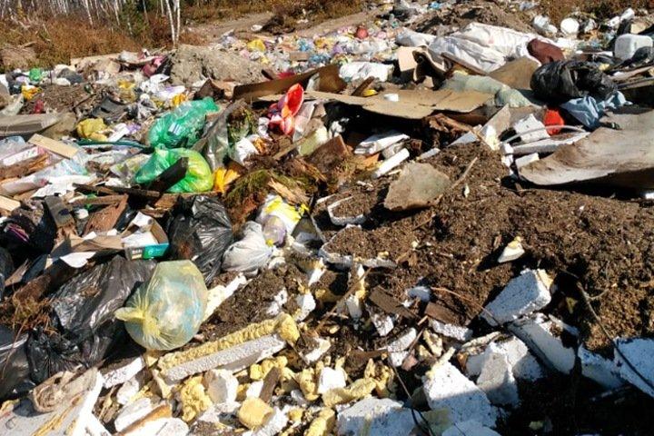 Отходы складируются на берегу Телецкого озера вопреки решению суда