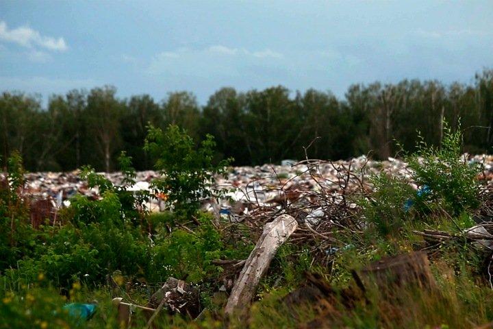 Приведут ли к переделу рынка мусорные конфликты в Новосибирске