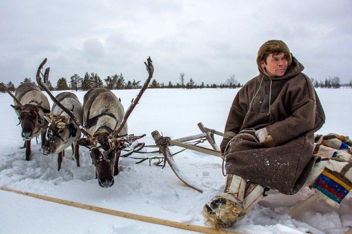 Адаптация к холодам и кочующий острог. Новости года об истории Сибири