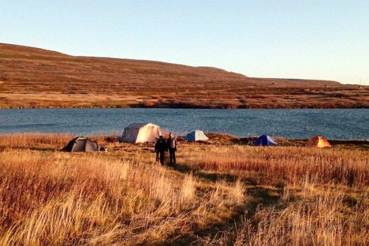 Биоразнообразие морского озера в Арктике сократилось вдвое за 100 лет. Виновато изменение климата