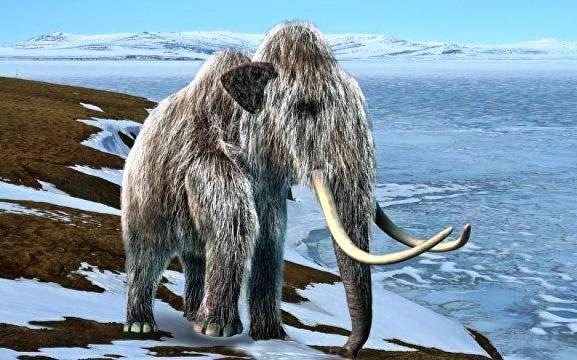 Почему вымерли последние мамонты на планете?